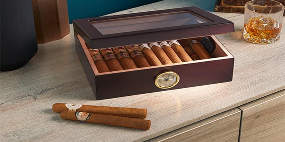 Humidor für 20 Zigarren Test