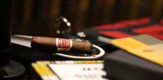 Zigarrenhalter Test